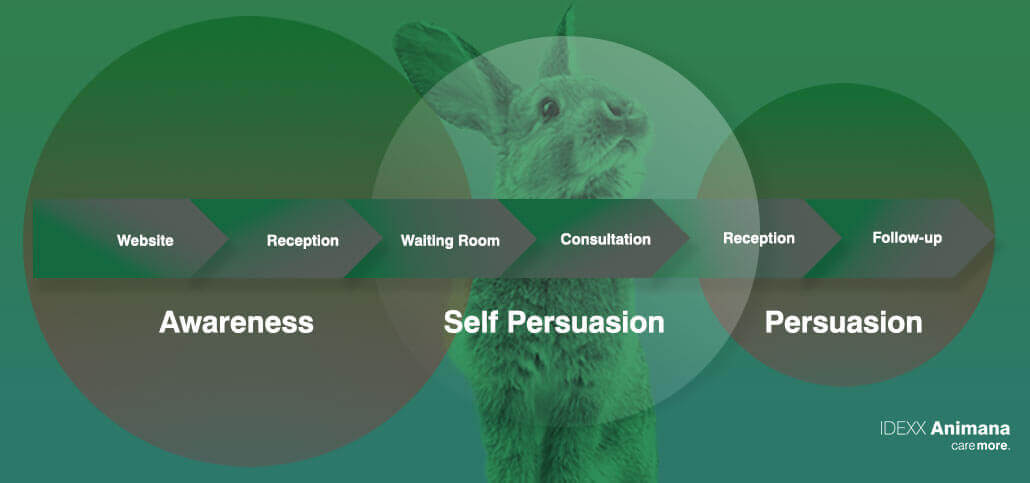 The Patient Journey and Self-persuasion