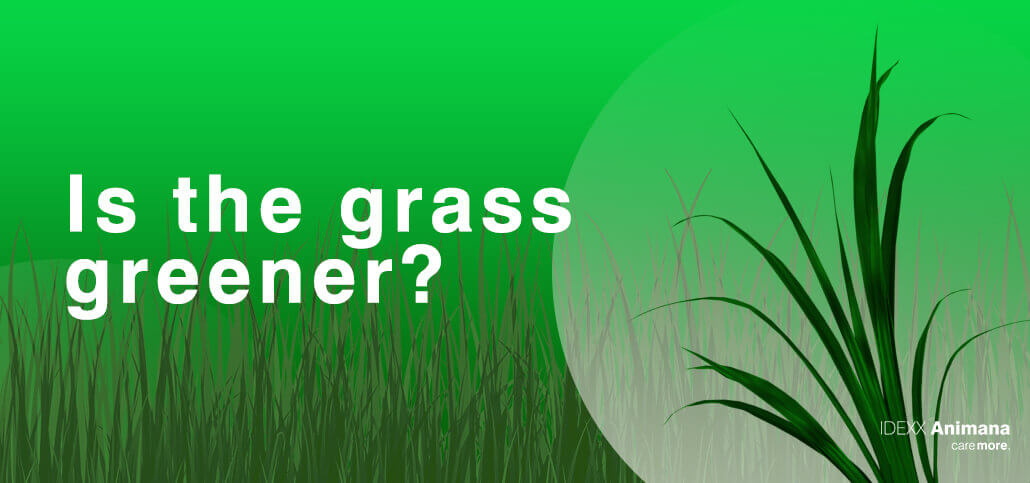 Is the grass greener?